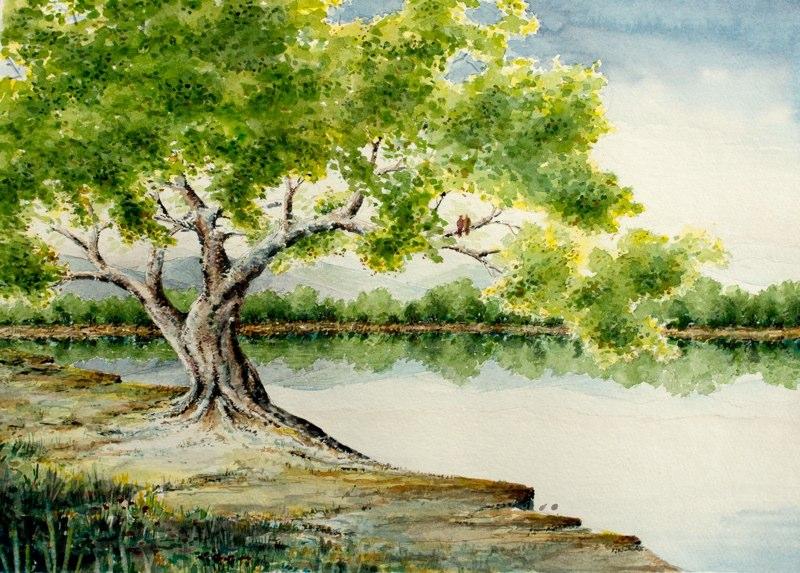 Tree-1-web