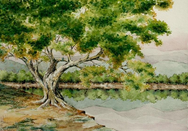 Tree-2-web